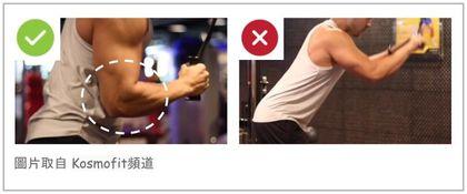 三頭肌訓練-手肘固定