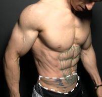 腹肌訓練 - 腹橫肌