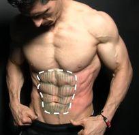 腹肌訓練 - 腹直肌