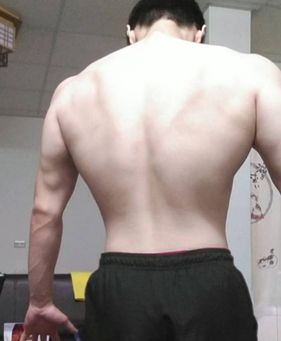 我的背肌訓練經驗