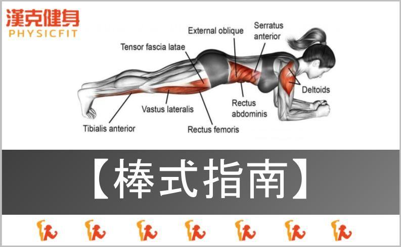 【棒式|動作指南】你知道棒式不能練腹肌、減肥嗎?6種變化任你挑選!