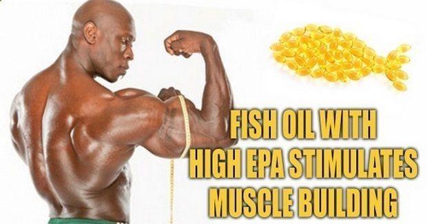 魚油是否可以讓肌肉生長
